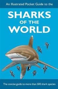 Illustrated pocket guide to the sharks of the world
