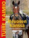 Hevosen kanssa