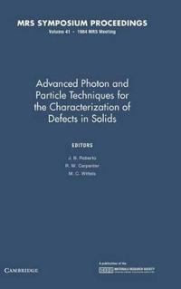 Advanced Photon and Particle Techniques for the Characterization of Defects in Solids