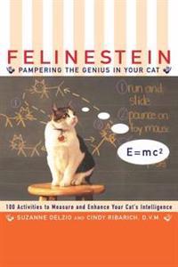 Felinestein: Pampering the Genius in Your Cat