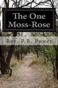 The One Moss-Rose