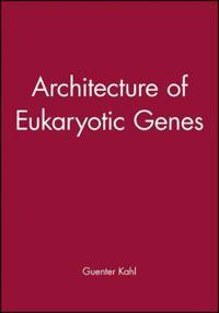 Architecture of Eukaryotic Genes