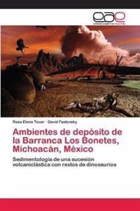 Ambientes de Deposito de La Barranca Los Bonetes, Michoacan, Mexico