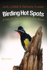 Birding Hotspots of Santa Fe, Taos, and Northern New Mexico
