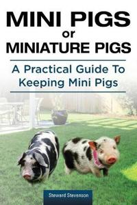 Mini Pigs or Miniature Pigs. a Practical Guide to Keeping Mini Pigs.
