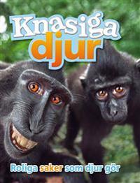 Knasiga djur : roliga saker som djur gör och varför