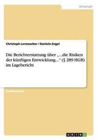 """Die Berichterstattung Uber ...Die Risiken Der Kunftigen Entwicklung..."""" ( 289 Hgb) Im Lagebericht"""