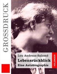 Lebensruckblick (Grossdruck): Eine Autobiographie