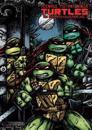 Teenage Mutant Ninja Turtles the Ultimate Collection 6