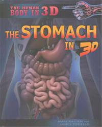 The Stomach in 3D