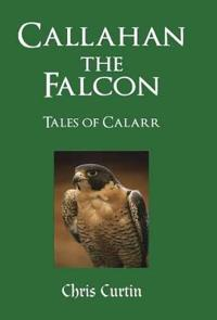 Callahan the Falcon