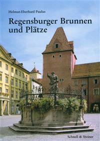 Regensburger Brunnen Und Platze: Geschichte, Funktion Und Ikonographie