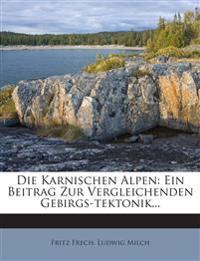 Die Karnischen Alpen: Ein Beitrag Zur Vergleichenden Gebirgs-tektonik...