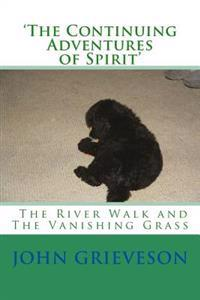 'the Continuing Adventures of Spirit': The River Walk and the Vanishing Grass