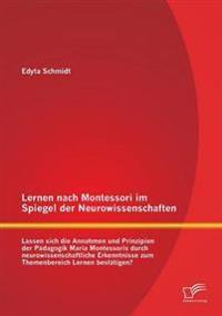 Lernen Nach Montessori Im Spiegel Der Neurowissenschaften