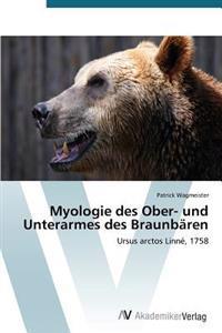 Myologie Des Ober- Und Unterarmes Des Braunbaren