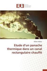 Etude D Un Panache Thermique Dans Un Canal Rectangulaire Chauffe