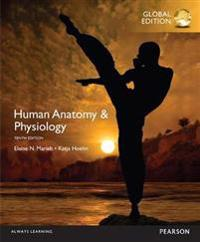 Human AnatomyPhysiology, Global Edition