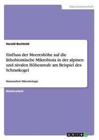 Einfluss Der Meereshohe Auf Die Lithobiontische Mikrobiota in Der Alpinen Und Nivalen Hohenstufe Am Beispiel Des Schrankogel