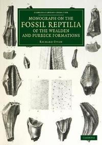 Monograph on the Fossil Reptilia of the Wealden and Purbeck Formations