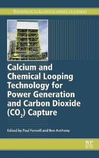 Calcium and Chemical Looping Technology for Power Generation and Carbon Dioxide (CO2) Capture