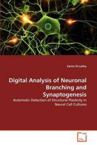 Digital Analysis of Neuronal Branching and Synaptogenesis