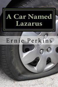A Car Named Lazarus: Lessons Learned from a 1977 Ford and His Cousins
