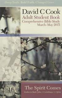 Bible-In-Life Adult Comprehensive Bible Study