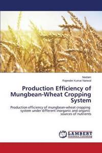 Production Efficiency of Mungbean-Wheat Cropping System
