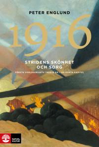 Stridens skönhet och sorg 1916 : första världskrigets tredje år i 106 korta kapitel