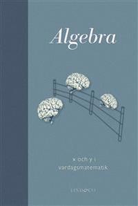 Algebra : x och y i vardagsmatematik