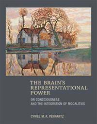 The Brain's Representational Power
