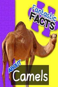 Fantastic Facts about Camels: Illustrated Fun Learning for Kids