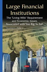 Large Financial Institutions