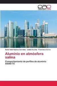 Aluminio En Atmosfera Salina
