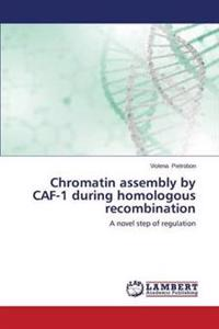 Chromatin Assembly by Caf-1 During Homologous Recombination