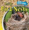 Inside Bird Nests