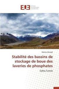 Stabilite Des Bassins de Stockage de Boue Des Laveries de Phosphates