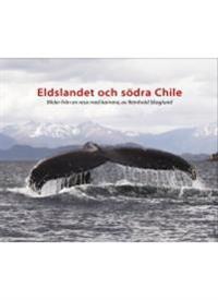 Eldslandet och södra Chile : bilder från en resa med kamera