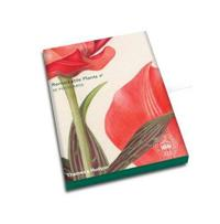 Remarkable Plants Postcards