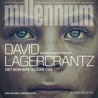 Det som inte dödar oss - Millennium 4
