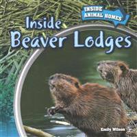 Inside Beaver Lodges