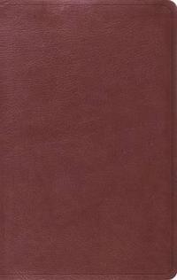 Value Thinline Bible-ESV