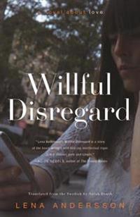 Willful Disregard: A Novel about Love