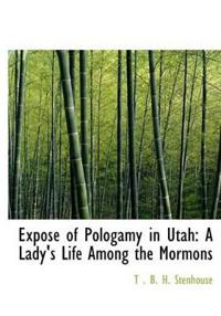 Expose of Pologamy in Utah
