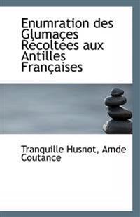 Enumration Des Glumaces Recoltees Aux Antilles Francaises