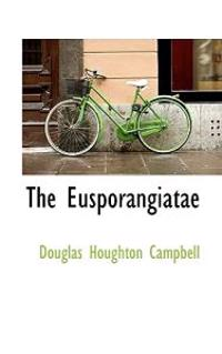 The Eusporangiatae