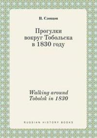 Walking Around Tobolsk in 1830