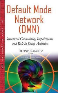 Default Mode Network Dmn