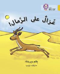 Gazelle on the Sand